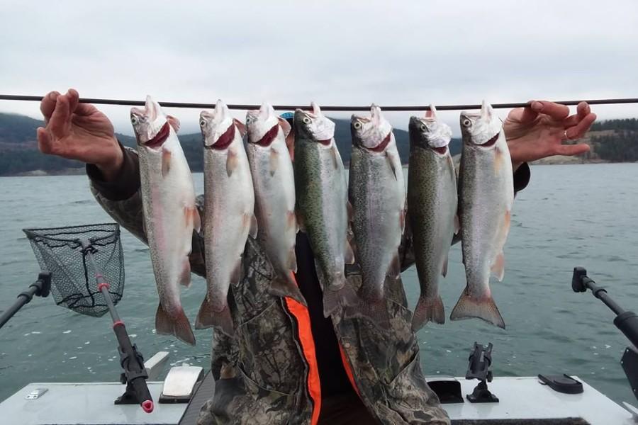 <span></span>Fishing